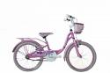 biciclette da bambina del 20