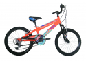 bicicletta del 20
