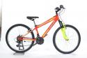 biciclette mtb per 10 anni