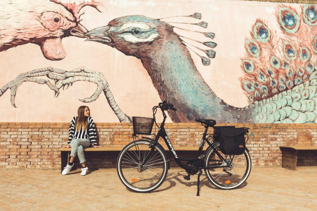 Bici elettrica economica da città