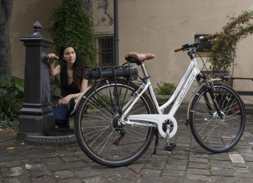 bici elettriche con accelleratore