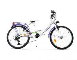 Bicicletta del 20 di Mal Disney