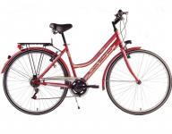 bici da città da donna economica