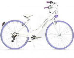 bicicletta da città vintage estate