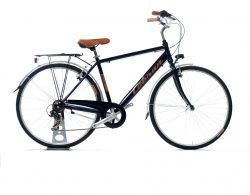 city bike RImini Cobran bike vintage