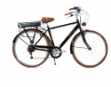 bici elettrica da città da uomo